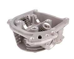 Cylinder head assy incl. valves with SAS / EGR system cylinder head assy